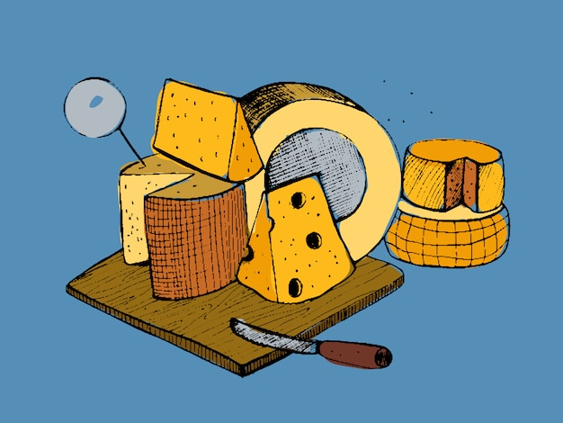 Cheese types composition. colorful   hand drawn illustration.