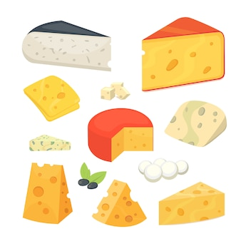 Cheese types . modern flat style realistic   illustration icons.
