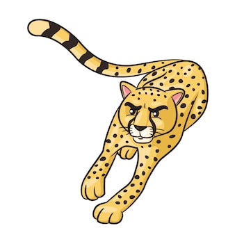 Cheetah cute cartoon