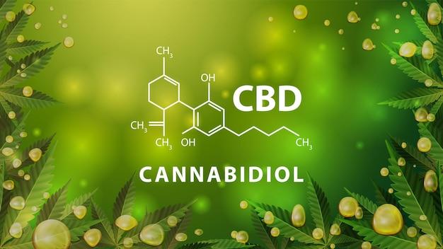 Chemical formula of cannabidiol