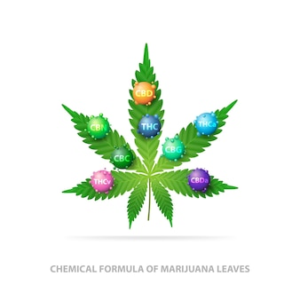 Chemical formula of marijuana leaves. green leaf of cannabis with 3d molecules of chemical formula of cannabis