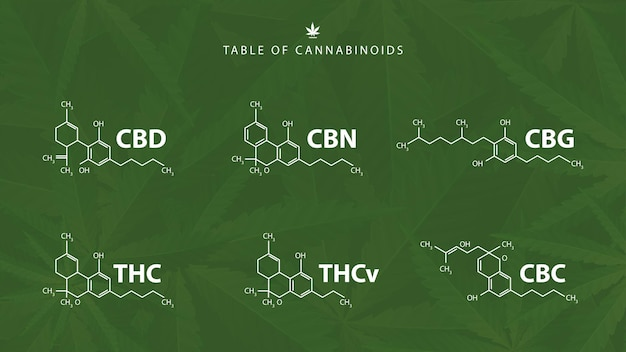 Chemical formulas of natural cannabinoids on green background with cannabis leafs