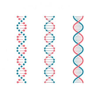 Chemistry code dna. double genetic code of human molecule. biotechnology future