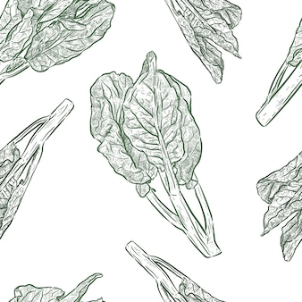 Chenese kale or chinese broccoli seamless pattern, vegetable. hand draw sketch vector.