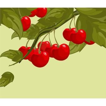 Cherries background design