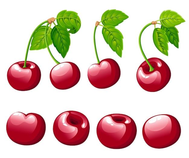 チェリーベリーコレクション。緑の葉と桜のイラスト。装飾的なポスター、エンブレム天然物、ファーマーズマーケットのイラスト