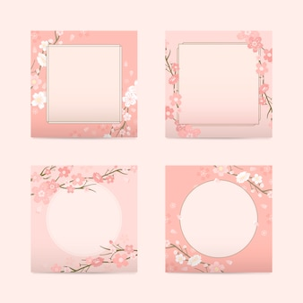 Cherry blossom background collection