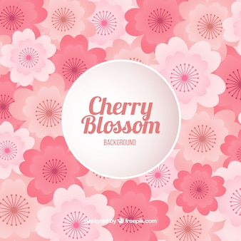 Cherry blossom background in gradient colour