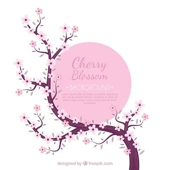Stile disegnato del fondo del fiore di ciliegia a disposizione