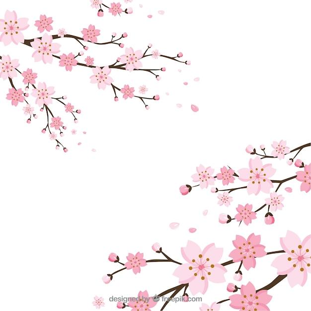 cherry blossom vectors photos and psd files free download rh freepik com cherry blossom clipart free cherry blossom clipart black and white