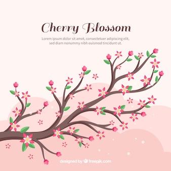 フラットスタイルの桜の背景