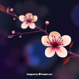 Cherry blossom background in realistic style