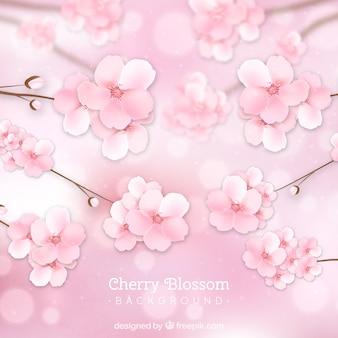 Цвет вишни в реалистичном стиле
