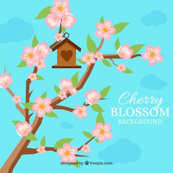 Cherry blossom background with birds house