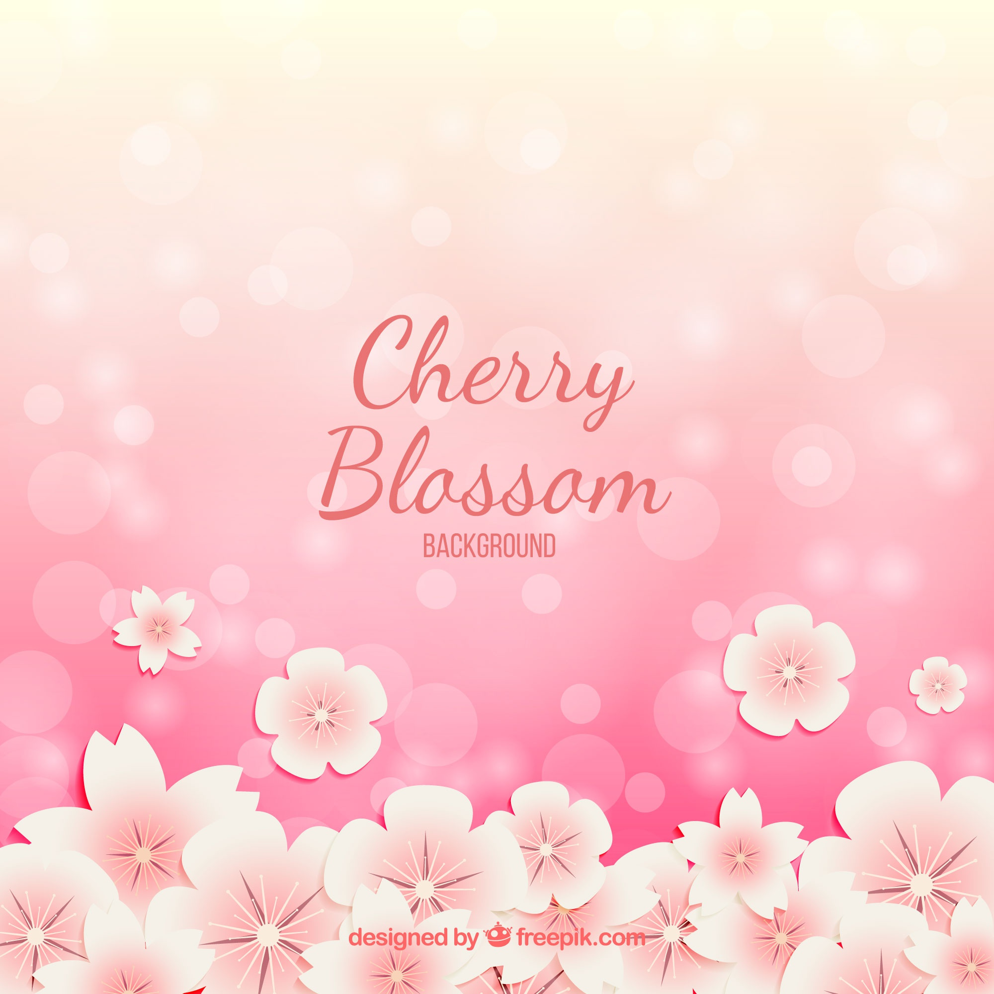 Cherry blossom background with bokeh effect