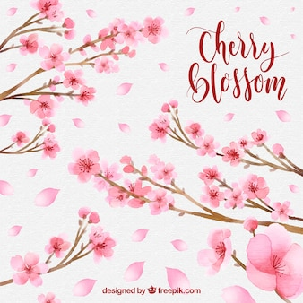 Cherry blossom background with branches