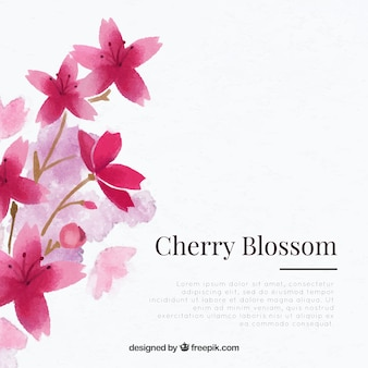 Cherry blossom background with floral watercolor