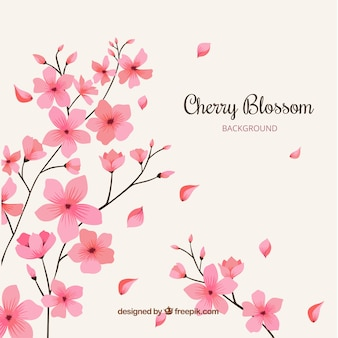Cherry blossom background with hand drawn flowers