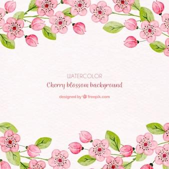 Цвет вишневого цветка с акварельными цветами
