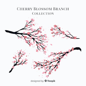 Cherry blossom branch collection