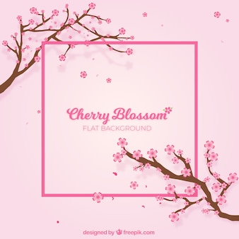 Cherry blossom flat background
