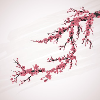 Cherry blossom flower red pink japanesse background
