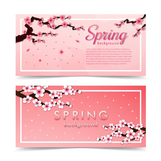 Cherry blossom frame. pink sakura background banner