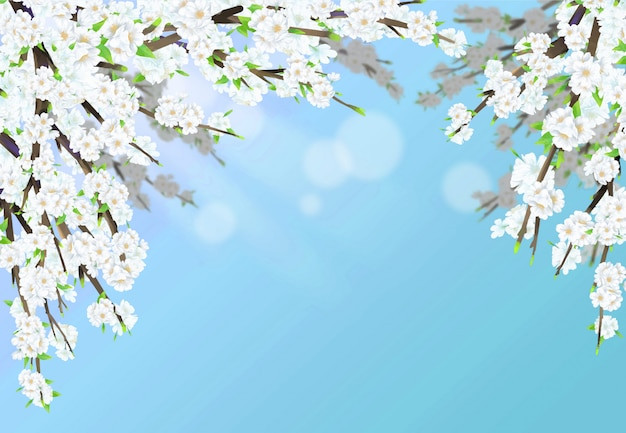 Cherry blossom illustration in full bloom with sunshine and sky blue background.