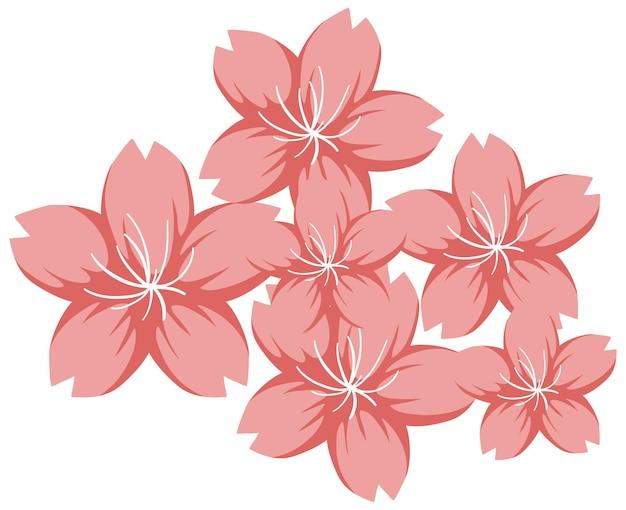 Вишневый цвет или сакура в мультяшном стиле изолированы