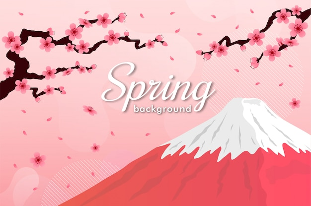 Cherry blossom . pink sakura fuji mountain spring background