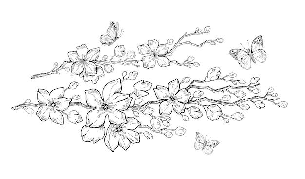 Цветочная вишня ботаническая рука рисовать каракули иллюстрации