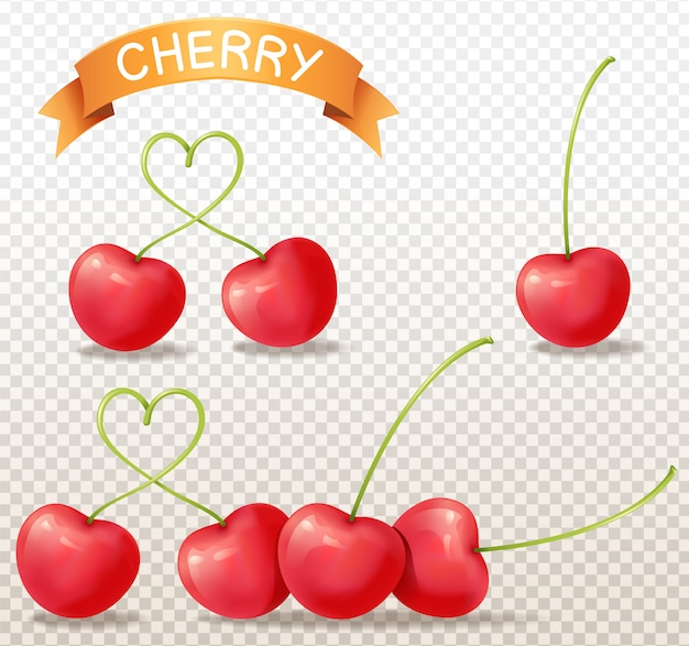 Cherry realistic on transparent background