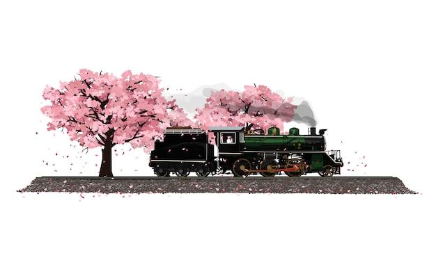 日本の春の桜の庭桜風吹きと蒸気機関車。