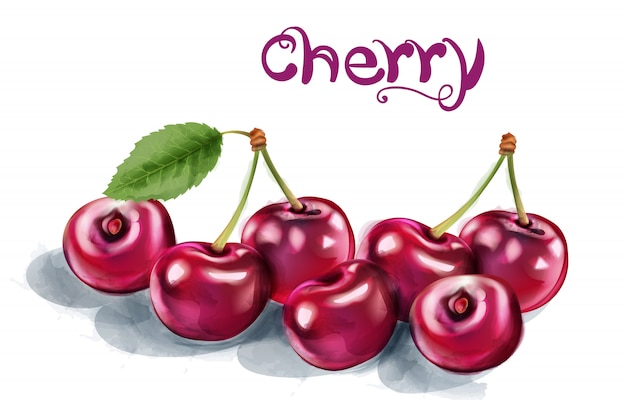 Cherry watercolor