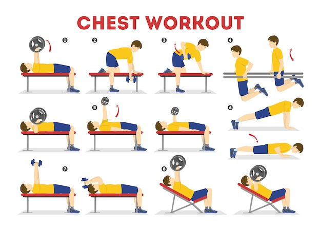 Chest workout set. collection of exercise for arm