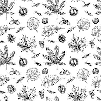 栗のシームレスなパターン。栗の葉と果物は、シームレスな背景をスケッチします。