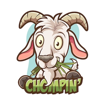 Chewing grass goat