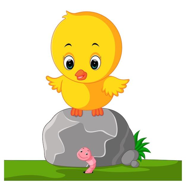 닭고기와 벌레 프리미엄 벡터