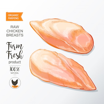 Chicken breast vector