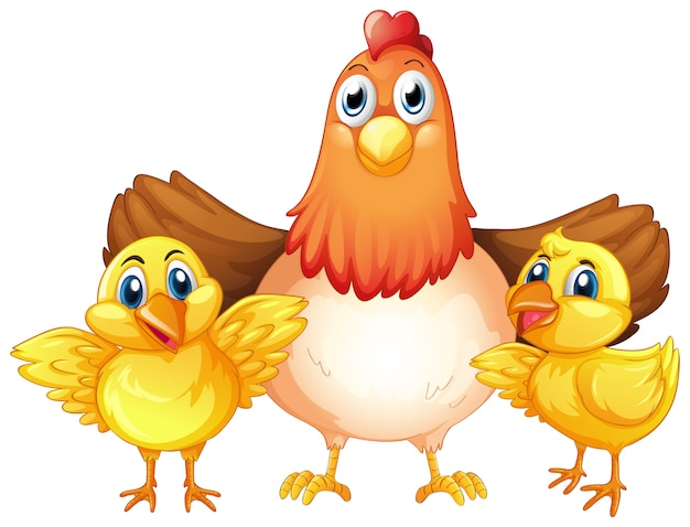 Chicken and chick character