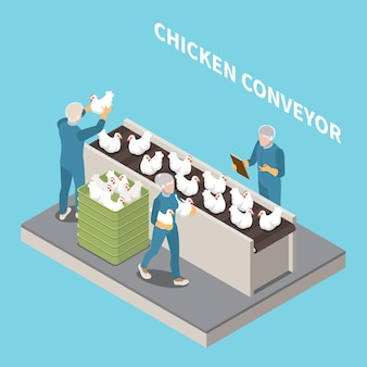家禽の等角図を検査するスタッフと青のチキンコンベヤー