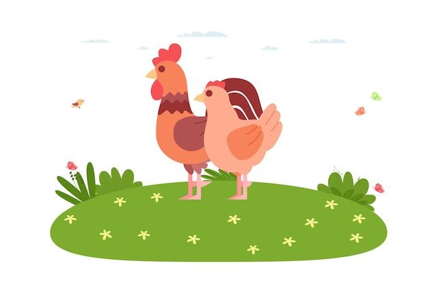 닭. 국내 새와 농장 동물입니다. 수탉과 암탉이 잔디밭에 서 있습니다. 만화 평면 스타일의 벡터 일러스트 레이 션.