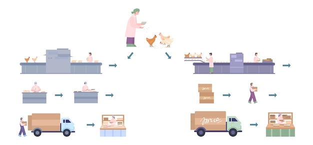 Chicken factory for production and delivery fresh eggs and meat