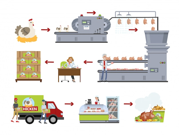 Цыпленок фабричный набор. делаем мясо на заводе.