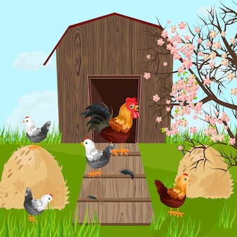 Chicken farm coop on green background