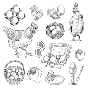 Chicken farm products sketches set