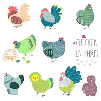 Chicken in farm