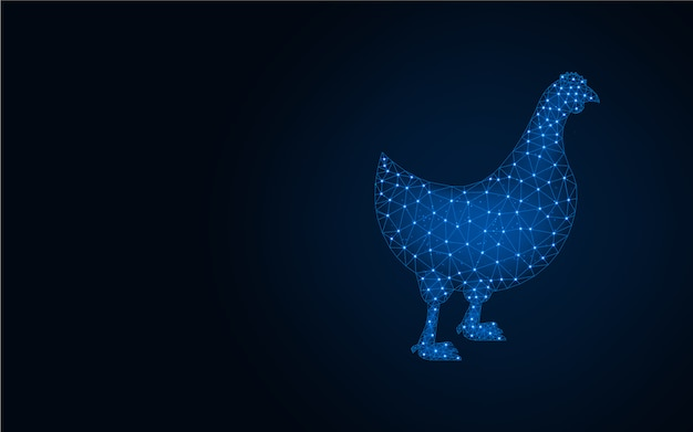 Chicken low poly blue background