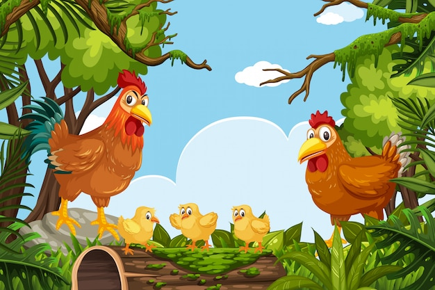 Chickens in jungle scene