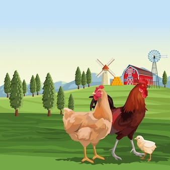 Chickens and roaster over landscape